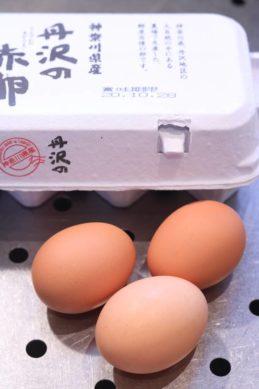 薬膳素材の卵