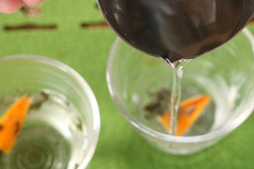 みかんピールとミントのハーブ薬膳茶カクテル